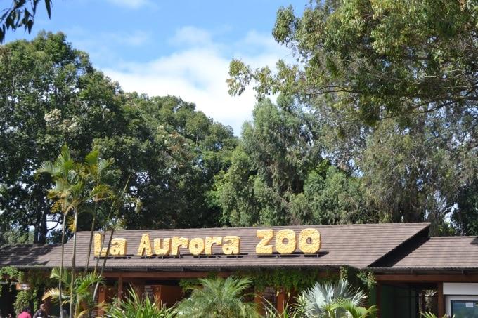 Zoo Aurora Guatemala (1)