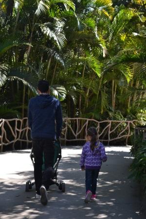 Zoo Aurora Guatemala (17)